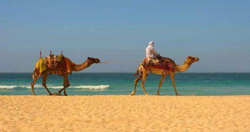 Mailbag: Low Self-Esteem, Moroccan Hash, and Retroactive Jealousy